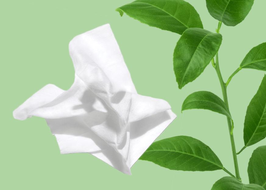 Lingettes Neutrogena compostables à base de plantes